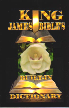 King James Bible's Built-In Dictionary by Barry Goddard