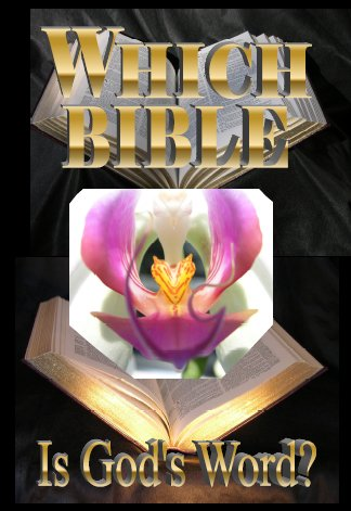 Which Bible Is God's Word? Update 2007 by Gail Riplinger